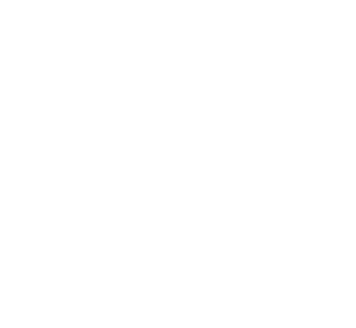 Residential Home Elevator Company in India